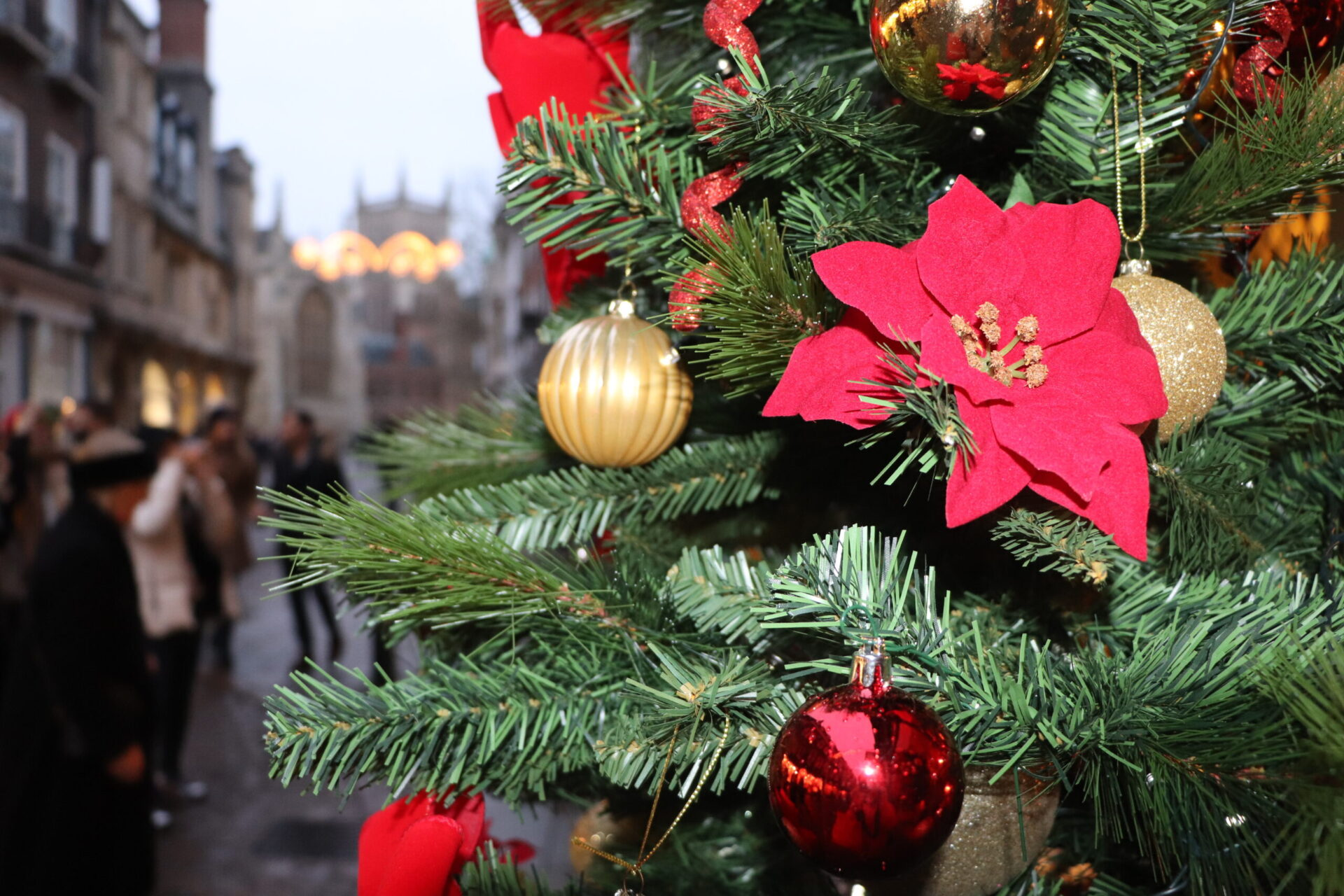 Christmas, Run Up to Christmas, support local, support local businesses, local comunity, together we can, lockdown 2, gift vouchers, cambridge, lets go punting,
